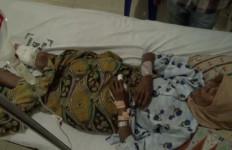 Tragis, Nenek Kaminun Diserang Babi Hutan, Kakinya, OMG… - JPNN.com