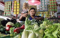 Jeruk, Wortel, hingga Kentang Impor dari Tiongkok - JPNN.com