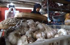 Kementan Konsisten Jalankan Aturan Wajib Tanam Bagi Importir Bawang Putih - JPNN.com