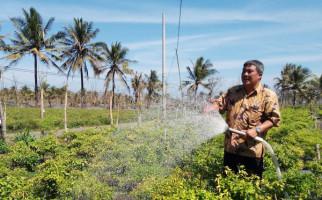 Dirjen Hortikultura Gelar Rapat Koordinasi Bahas Hambatan Investasi Pertanian - JPNN.com