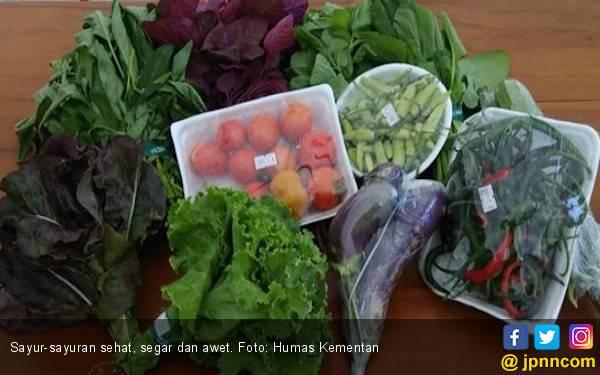 6 Makanan Pencegah Anemia - JPNN.com