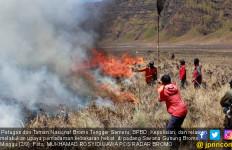 Asap Kebakaran Hutan Bromo Berisiko Picu Gangguan Pernapasan - JPNN.com