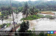 Banjir Rusak Ribuan Hektare Tanaman Padi di Pasaman Barat - JPNN.com