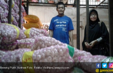 Harga Bawang Putih Naik, Diduga Permainan Tengkulak - JPNN.com