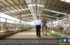 Mentan Mengapresiasi Peternak Sapi Potong Jawa Timur - JPNN.com