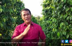 Mentan Ambil Langkah Tegas Terkait Dugaan Suap Izin Impor Bawang Putih - JPNN.com