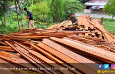KLHK Sita Ribuan Potong Kayu Olahan Ilegal di Nunukan - JPNN.com