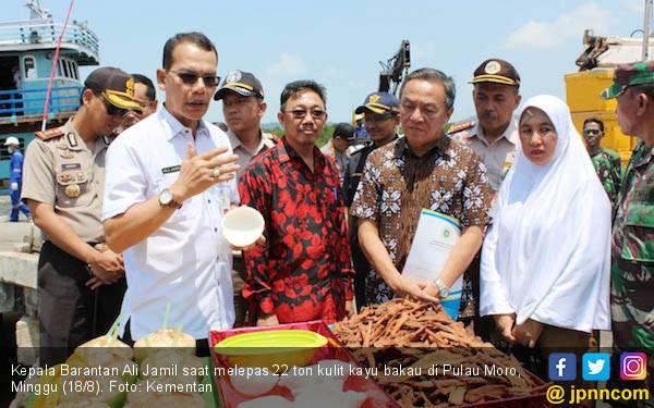 Kulit Bakau Moro Jadi Andalan Ekspor Pertanian Baru - JPNN.com