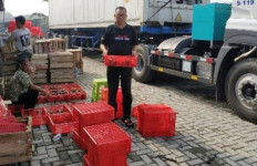 Promosi Dagang Berhasil, Kementan Tingkatkan Ekspor Produk Hortikultura - JPNN.com