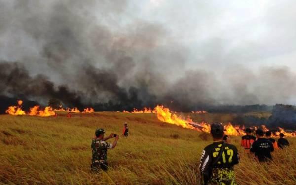 Diduga akibat Puntung Rokok, 100 Hektare Lahan Ilalang Ludes Terbakar - JPNN.com