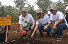 Kolaborasi dengan Sejumlah Pihak, APP Sinar Mas Tanam 10 Ribu Bibit Pohon - JPNN.com
