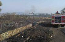 Kebakaran Lahan di Bogor Meluas, Ini Penyebabnya - JPNN.com