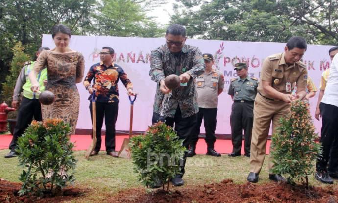 Program Penghijauan Jakarta