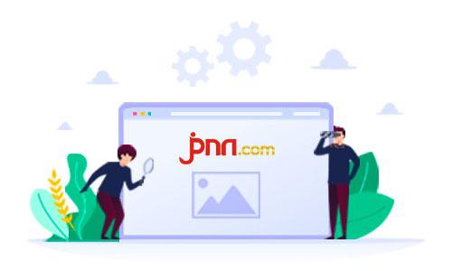 Babi Seberat 300 Kg Ini Dilarang Untuk Berjalan Di Tanah Pemerintah - JPNN.com