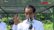 Jokowi Ingin Kembangkan Green Economy Usai Tinjau Proyek Nursery di Bogor - JPNN.com