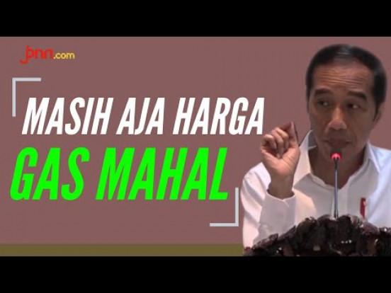 Harga Gas Mahal, Jokowi Kesal - JPNN.com