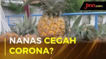 Buah Nanas Bisa Tingkatkan Imun Tubuh? - JPNN.com