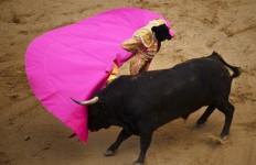 Demi Hak Binatang, Tradisi Matador Mulai Dilarang - JPNN.com