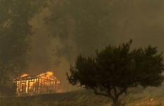 Kebakaran di California Selatan Sudah Bisa Dikendalikan - JPNN.com