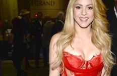 Shakira Lebih Suka Chelsea Ketimbang MU - JPNN.com