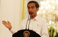 Jokowi Girang Ada Tambahan 850 Ribu Wisman Masuk Indonesia - JPNN.com