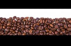 Kopi dan Coklat Indonesia Tembus Pasar Afrika - JPNN.com