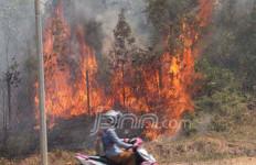 Ini Komentar Mantan Menhut soal Kebakaran Hutan - JPNN.com
