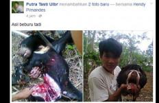 KLH Segera Selidiki Pembunuhan Beruang Madu di Sumsel - JPNN.com