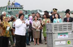 Pesawat TNI Angkut 14 Orangutan dari Thailand - JPNN.com