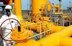Permen ESDM Dianggap Hanya Hambat Pembangunan Infrastruktur Gas - JPNN.com
