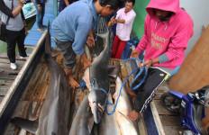 Lagi, Kapal Berbendera Malaysia Ditangkap Mencuri Ikan - JPNN.com