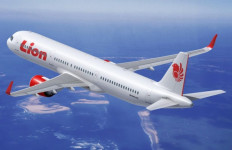 Co Pilot Lion Air Mendesah, Tawarkan Pramugari Janda ke Penumpang - JPNN.com