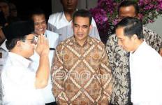 Sudirman Vs Novanto: Pak Prabowo Hanya Ingin Kejelasan - JPNN.com