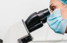 Studi: Ada Infeksi Menular Seksual Terbaru - JPNN.com