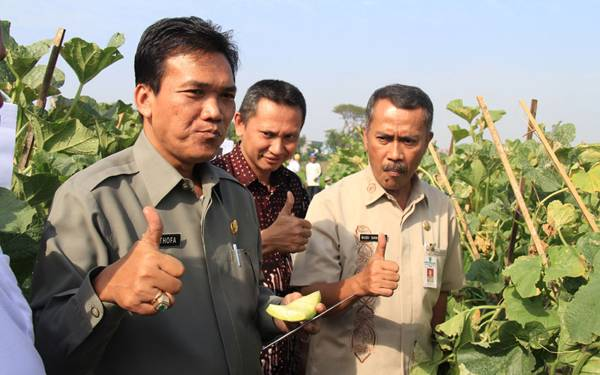 Keren Banget! Program Bupati Kudus Dipilih Jokowi jadi Pilot Project - JPNN.com