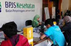 Tak Hanya Ombudsman RI, Aktivis LSM Juga Kawal Seleksi Direksi BPJS - JPNN.com