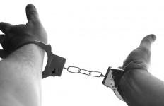 Buronan Interpol Akhirnya Ditangkap - JPNN.com