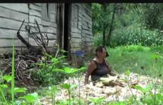 Tolong, Nenek Hidup Sebatang Kara di Hutan, Telinga Dimakan Belatung - JPNN.com