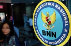 Kembangkan Penangkapan Bupati, BNN Buru Pihak Lain - JPNN.com