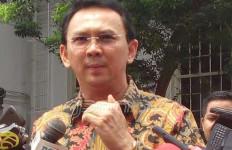 Anggota DPR Sarankan BPK Polisikan Ahok - JPNN.com