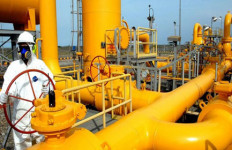 Pakai Gas Bumi PGN, Pabrik Pupuk Hemat Rp 15 M - JPNN.com