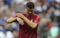 Terungkap! Final Euro 2016 Sempat Diganggu Invasi Binatang Ini - JPNN.com
