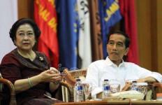 Pengamat: Golkar Ganggu Bulan Madu Jokowi-PDIP - JPNN.com