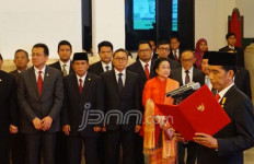 Belum Saatnya Nyatakan Usung Jokowi untuk Pemilu 2019 - JPNN.com