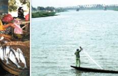 Jadi Ikon Kota, tapi Ikan Rengkik Semakin Langka - JPNN.com