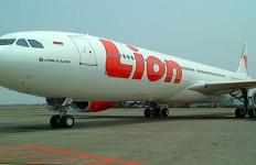 Penumpang Lion Air Ngamuk, Pilot Jadi Sasaran - JPNN.com