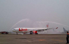 Gratis, 14 Pilot Pecatan Lion Melawan - JPNN.com