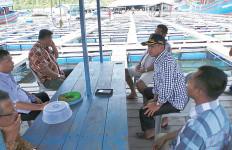 Menjanjikan, Nelayan Didorong Budiaya Ikan Seharga Rp 1 Juta Per Ekor Ini - JPNN.com