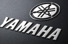 Yamaha Nmax Jadi Idola Anak Muda dan Eksekutif Muda - JPNN.com