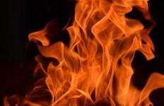 OMG! Suhu Panas di Negara Ini Dapat Membakar Kotoran Kuda - JPNN.com